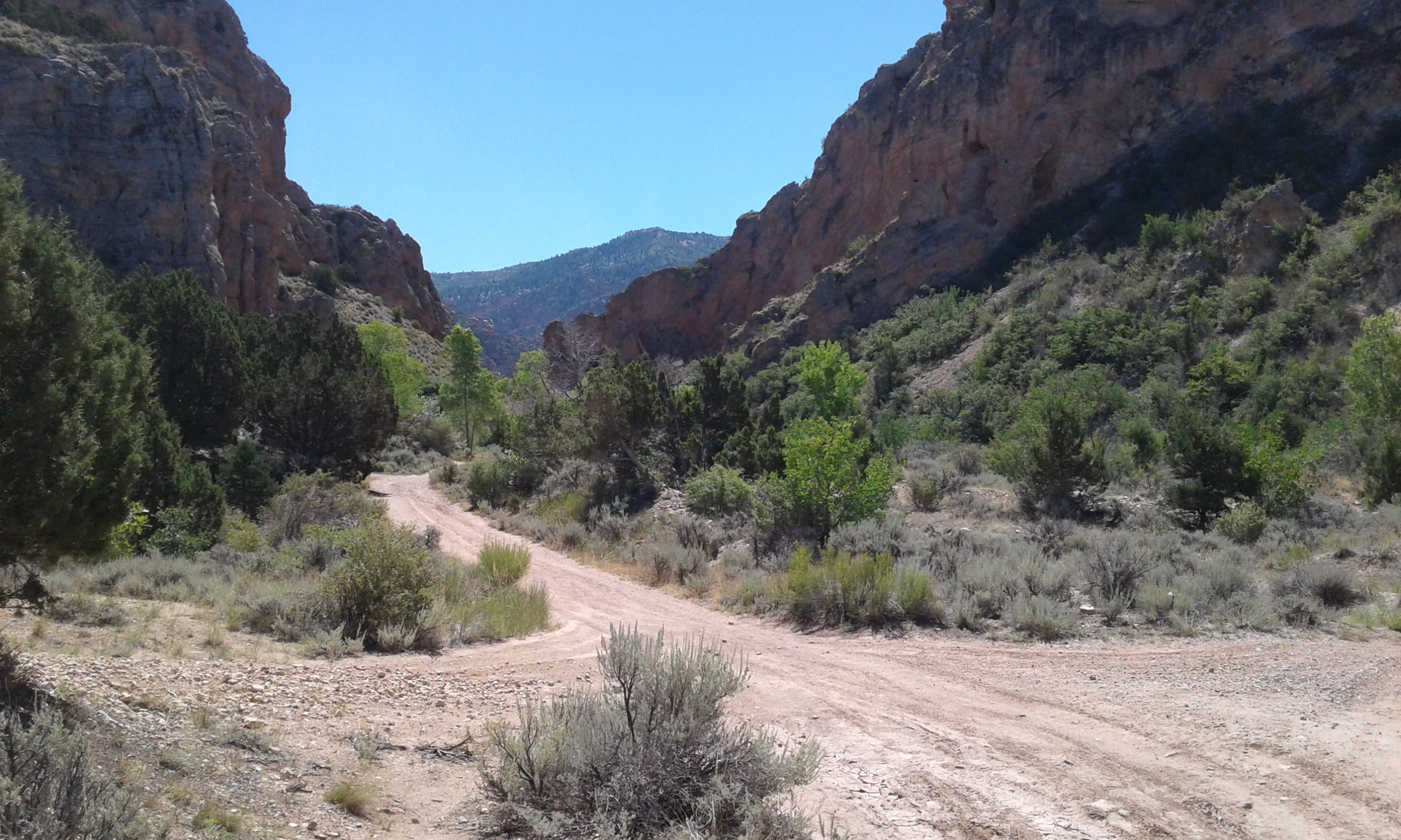 Entrance to Spring Creek Canyon